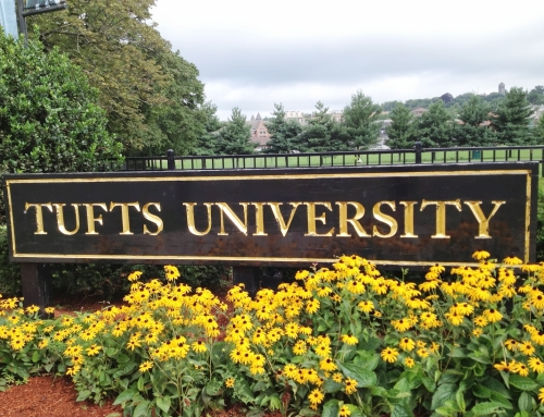 Teacher Training at Tufts